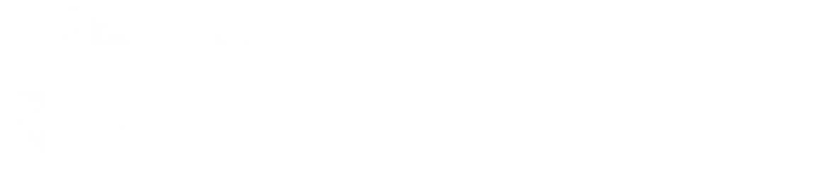 cropped-SalesStep_logo_01_Wit-2.png